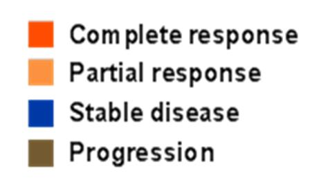 = 16 11 PD patients with progression of non-target lesions or new lesion not shown 60 patients with 2 or more prior lines