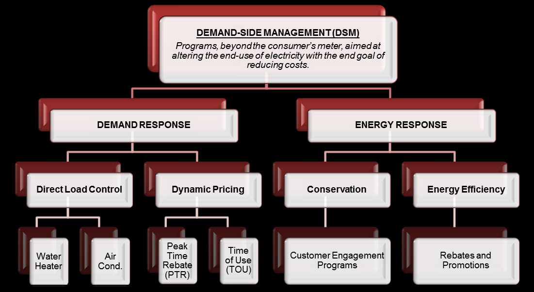 Demand Side Management (DSM) Programs DSM programs aim to alter the end-use of electricity to reduce costs and include both Demand Response