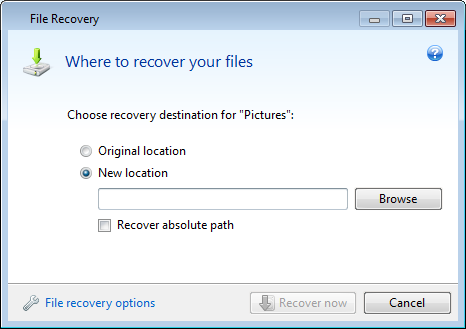 3. This opens the File Recovery window. When recovering a specific file version, you start recovery from the View Versions window. In either case, starting recovery opens the File Recovery window. 4.