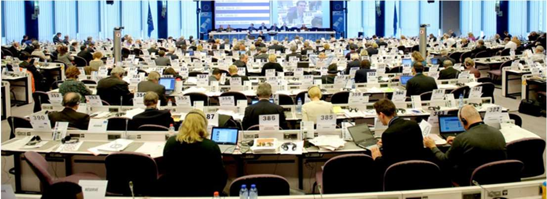 The European Economic and Social Committe (EESC) Treaty based consultative body gathering civil society representatives from the