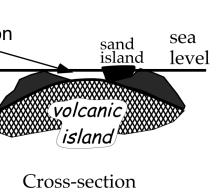 Charles Herzig Barrier Reef Atoll How or why does one kind of reef become