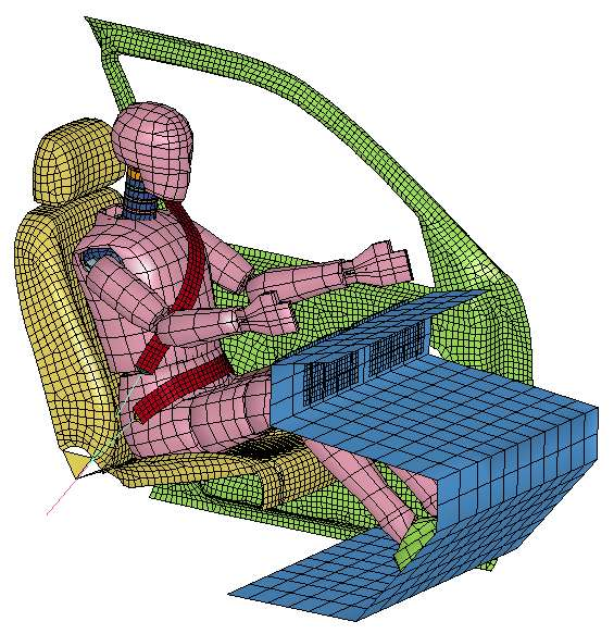 Dummy and Human Model for Seat Belt Design