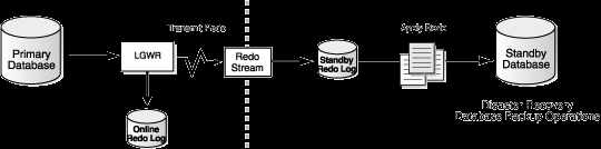 Data Guard switchover Downtime dependency: Last of the redo data transmission Last of the redo data