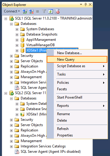 19. Under the SQL1 node, expand Databases and select XDSite1. Right-click and select New Query.