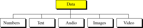 Describe how audio is stored in a computer using sampling, quantization and encoding. Describe how images are stored in a computer using raster and vector graphics schemes.