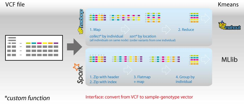 4. Conclusion We demonstrate the potential applications of processing VCF files using Apache Spark. We successfully apply k-means clustering to over 1 thousand individuals with millions of variants.