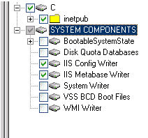 SharePoint Server 2010 Recovery Examples You can now select and restore only IIS Config Writer and IIS Metabase Writer under SYSTEM COMPONENTS as shown in Figure 102 on page 413.