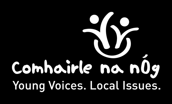 Your energy was amazing! For Comhairlí reading this report we hope you found some useful suggestions to use in your Comhairle locally.