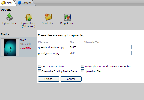 2. In the right-hand pane, in the Options section, click Upload Files (Advanced). 3.