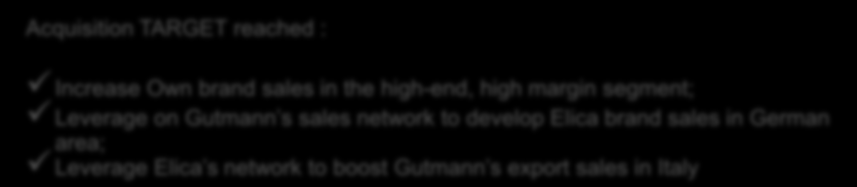 GUTMANN Focus Acquired in November 2008 Acquisition TARGET reached : Increase Own brand sales in the high-end, high margin segment; Leverage on Gutmann s sales