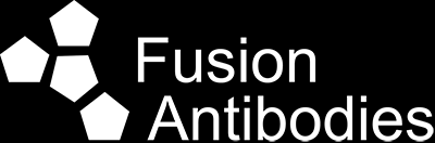 About Us Fusion Antibodies is a CRO established in 2001 as a spin-out from Queen s University Belfast.