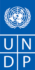 INDIVIDUAL CONSULTANT PROCUREMENT NOTICE Date: 1 July 2015 Country: UNDP CO Thailand Description of the assignment: National Expert on Public Finance (Open to Thai National only) Project name: UNDP