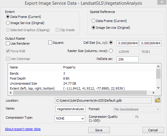 Export options for an ArcGIS for Server Image Service