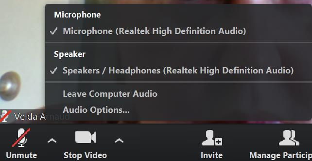 These show the microphone and speakers that are being used. The Audio Options at the end will take you to the introductory screen where you may test the audio.