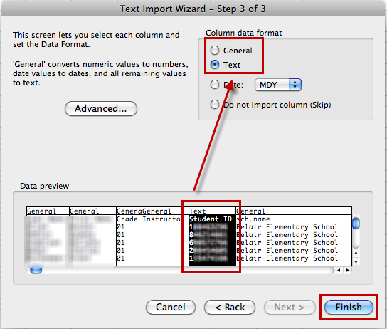 A Text Import Wizard window will appear. Click Next. Unselect the Tab Delimiters and select the Comma Delimiters, then click Next.