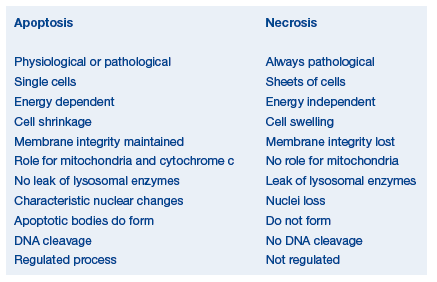 controls for mitochrondrial stains