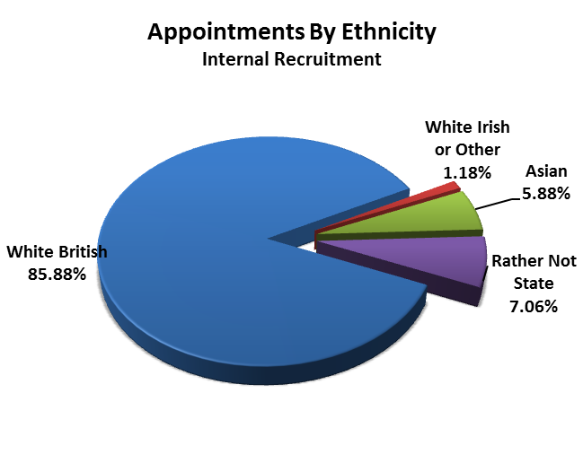 Ethnicity While most of the percentages are similar to last year, in 2014 there were no appointments from other ethnicity. In 2015, the council appointed 1.
