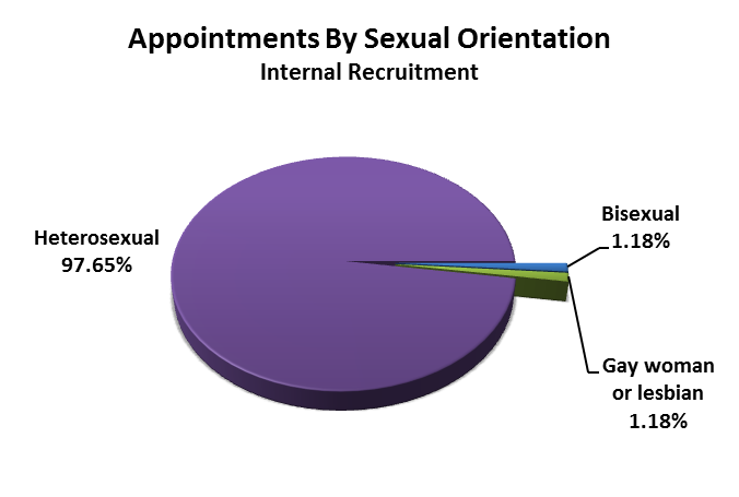 Sexual Orientation (including civil partnerships) In comparison to the figures from last year, we have tripled the amount of bisexual people that have been appointed into posts in the council.