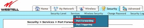 Name: A name whatever you want for port forwarding Start Port: the camera s port End Port: the camera s port Protocol: TCP IP Address: the camera s IP address Click Add Rule For Webtell Routers 1.