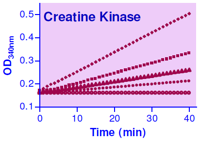 Data Analysis Calculation of Results Calculate sample CK activity using the following equation: OD CK (U/L) = OD 40min CALIBRATOR - OD - OD 20min H2O 150 OD 40min and OD 20min are OD 340nm values at