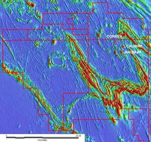 Paterson Province Discovery Opportunity Opportunity Preservation Greater than 85% of the Paterson Province s highly prospective Proterozoic rocks are concealed beneath a veneer of younger Phanerozoic