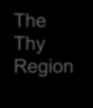 Main Energy Characteristics of the Thy Region The Thy Region For the last 30 years, farmers,