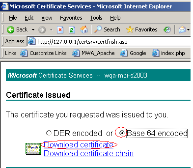 5. When prompted, select Save this file to disk and save the certificate to a