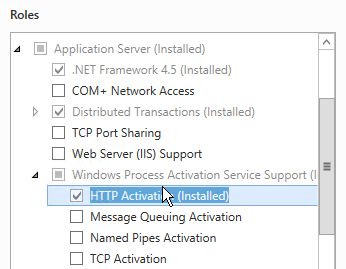 Before installing OSR Portal 4.6 The Application Server role must be installed and the Windows Process Activation Service Support enabled.