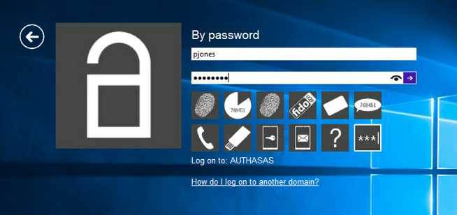 4. Enter your password and click icon or press Enter to continue.