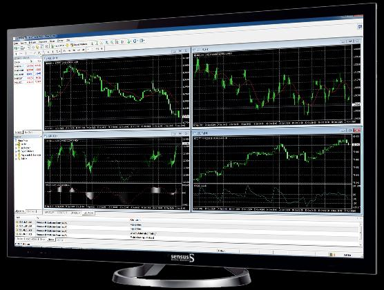 METATRADER 4 Guide