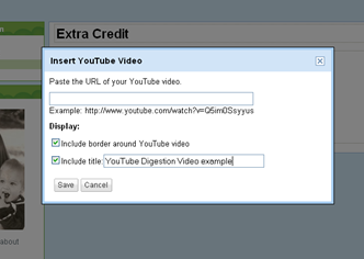 You may now enter the URL of the YouTube video you wish to add by copying and pasting it.