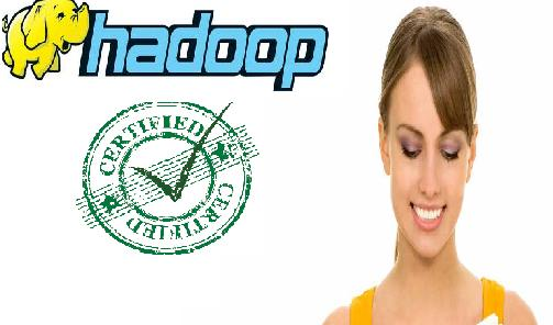 Hadoop Certification Exam Simulator (Developer/Administrator ) + Study Material o Contains 4 practice Question