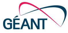 GÉANT Open Exchange Overview Facilitating collaboration has always been the cornerstone of GÉANT, and GÉANT Open adds to its portfolio of collaboration services to enable NRENs and researchers to