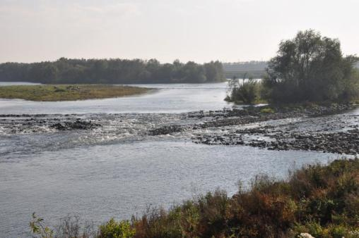 Large rivers in Germany 24 stream restoration projects in Europe, 1-12 yr old 7 to 2,530 km 2 watersheds, average restored length 1.