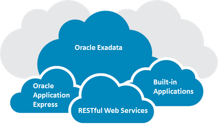 Key Components Oracle Exadata The Oracle Database Cloud Service runs on Oracle Exadata hardware the most advanced database platform in the world today.