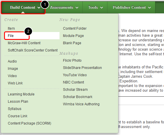 3. Click on Build Content menu to expand, and then select File from the Create column.