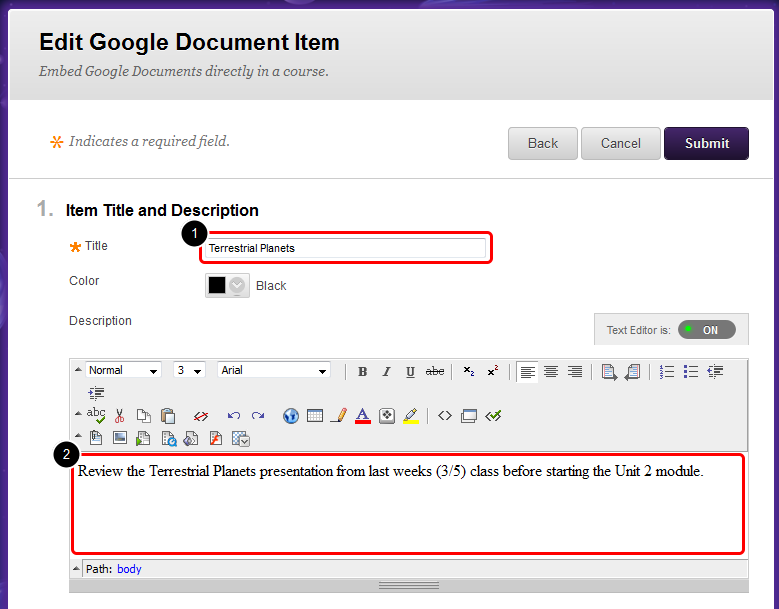7. On the Edit Google Document Item page, the Title will populate with the name of the Google Docs.