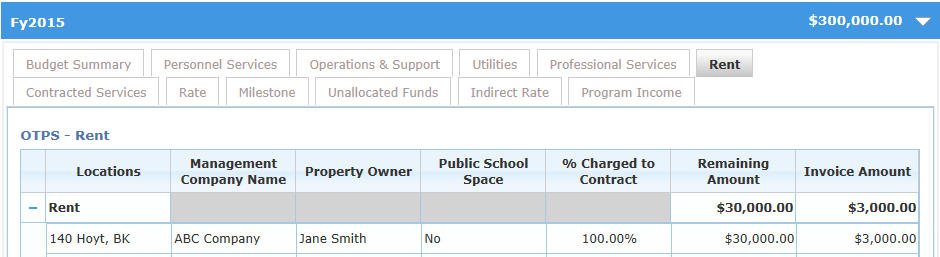 Professional Services costs are associated with independent entities with professional or technical skills. 22 20. Click on the + symbol next to the Professional Services row to expand the grid.