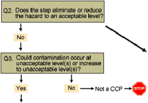 Design of the HACCP Plan The Food Safety Team need to formulate and document a HACCP plan defining the hazards to be controlled, CCPs where hazards are controlled, critical limits and monitoring