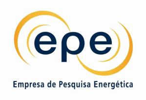INVESTMENTS IN THE ELECTRICITY SECTOR Mauricio