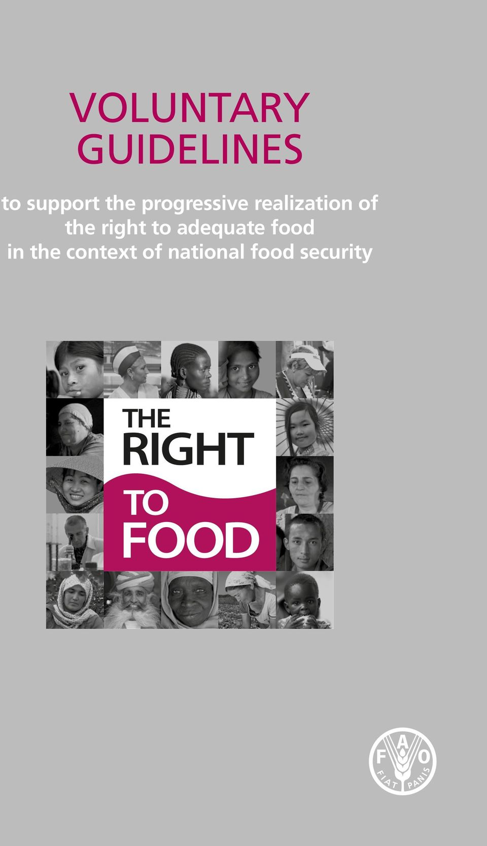 the right to adequate food in