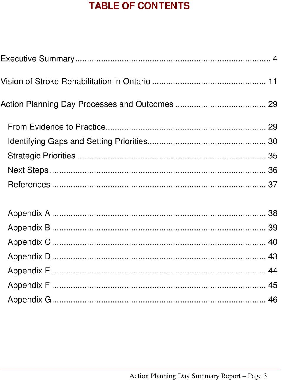 .. 29 Identifying Gaps and Setting Priorities... 30 Strategic Priorities... 35 Next Steps... 36 References.