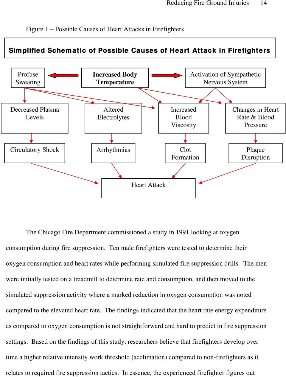 Formation Plaque Disruption Heart Attack The Chicago Fire Department commissioned a study in 1991 looking at oxygen consumption during fire suppression.
