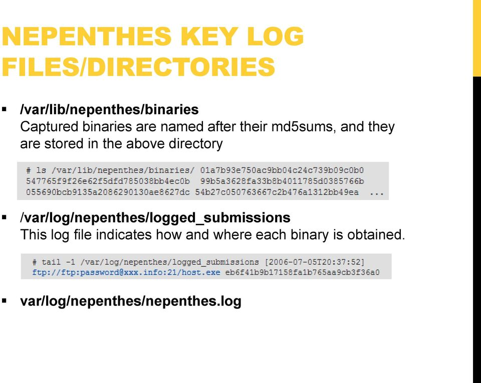 the above directory /var/log/nepenthes/logged_submissions This log file