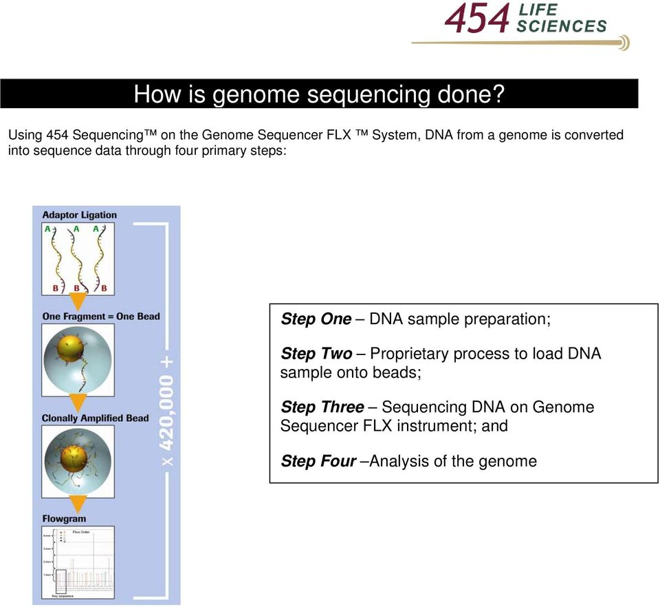 into sequence data through four primary steps: Step One DNA sample preparation; Step Two