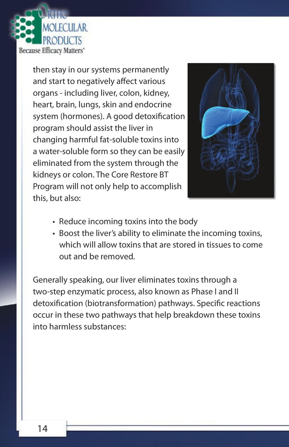 The Core Restore BT Program will not only help to accomplish this, but also: Reduce incoming toxins into the body Boost the liver s ability to eliminate the incoming toxins, which will allow toxins
