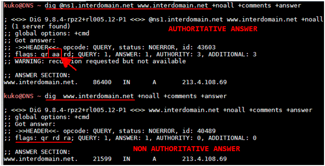 Illustration 4. Authoritative Answer and Cached Answer. Note the flag aa (authoritative answer). Cache Servers.