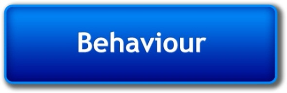 behaviour Reflective and