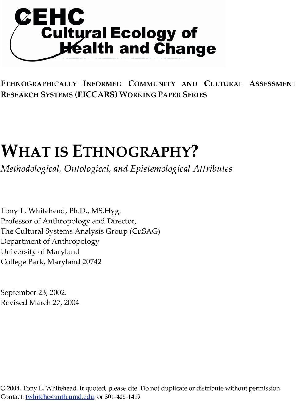 sample ethnographic research paper