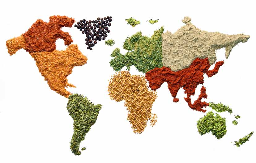 TRACEABILITY, THE FOOD CHAIN Globalization of the food supply chain means that distance between processors and farmers can often be many time zones apart.